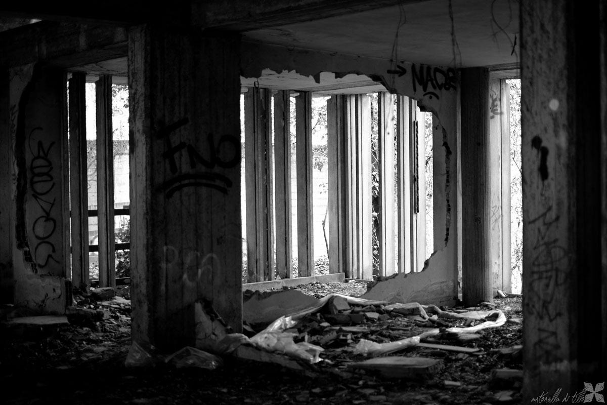 fotografia del mostro abbandonato di Bologna