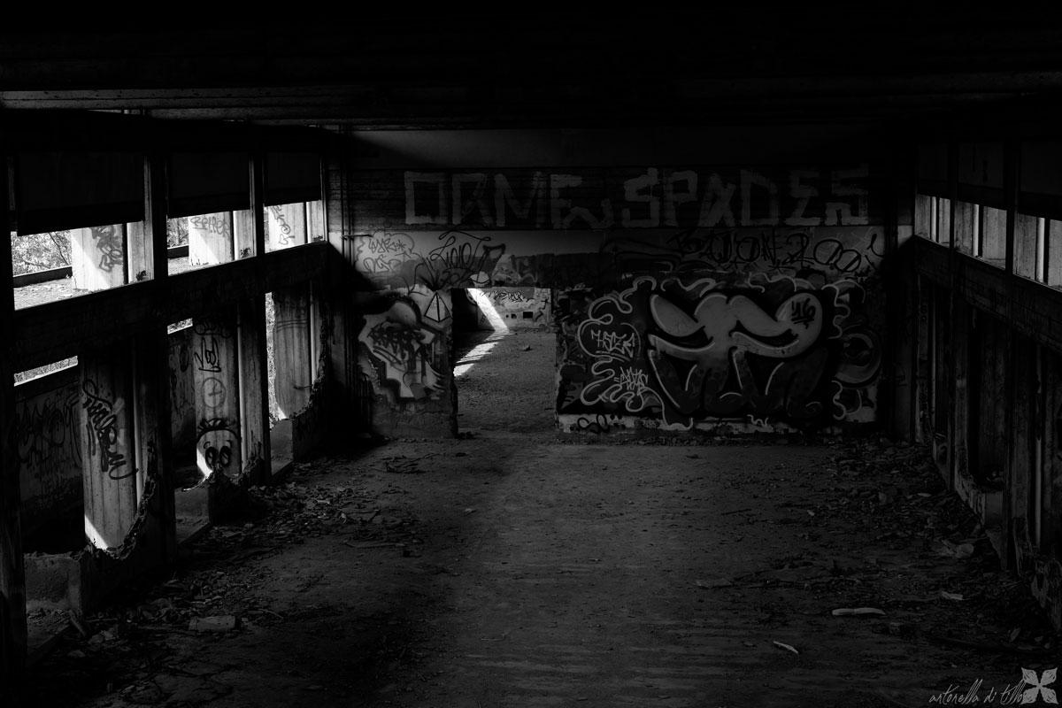 Graffiti e Murales nel Mostro 20