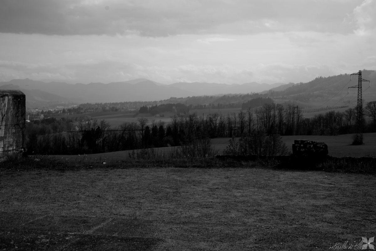alberi, landscapes, paesaggio abbandonato, traliccio