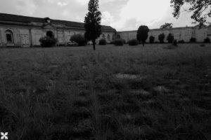 cimitero 366 fosse